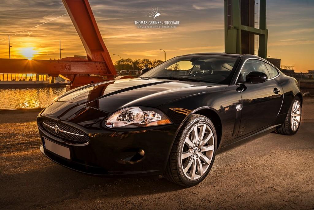 Jaguar Kalender 2015
